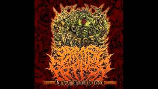 USSB Presents:Best of Slamming brutal death metal bands VOL.1