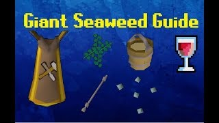 Exact Requirements** Fossil Island Unlocked Trident/Brine Sabre 23 ...