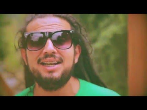Videos Reggae Chile 2015