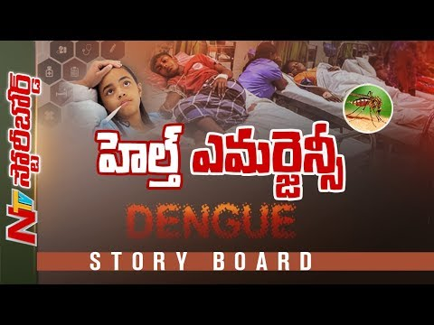 Special Focus On Viral Fevers In Telugu States || Story Board || NTV