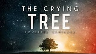 The Crying Tree ᴴᴰ || True Story