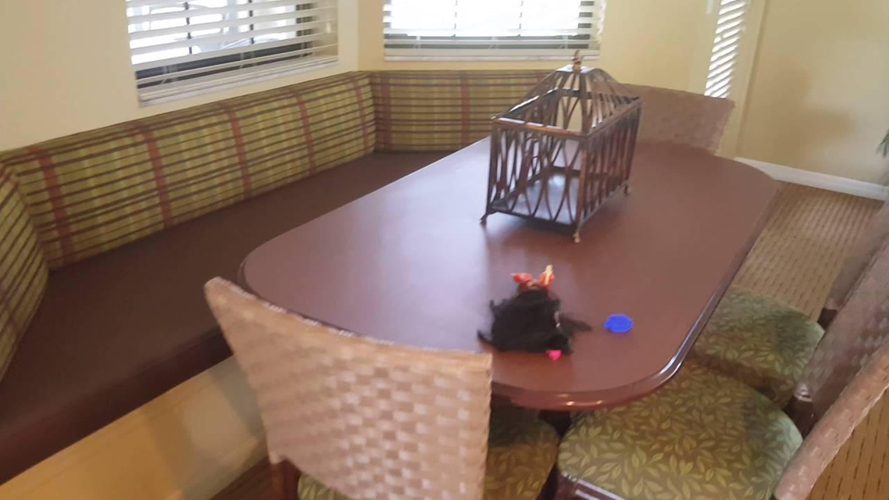3 bedroom villa orange lake resort