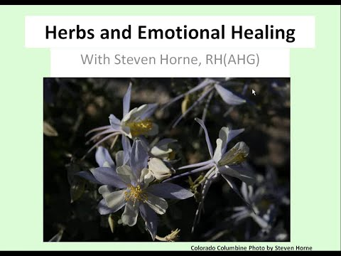 Herbs and Emotional Healing Webinar