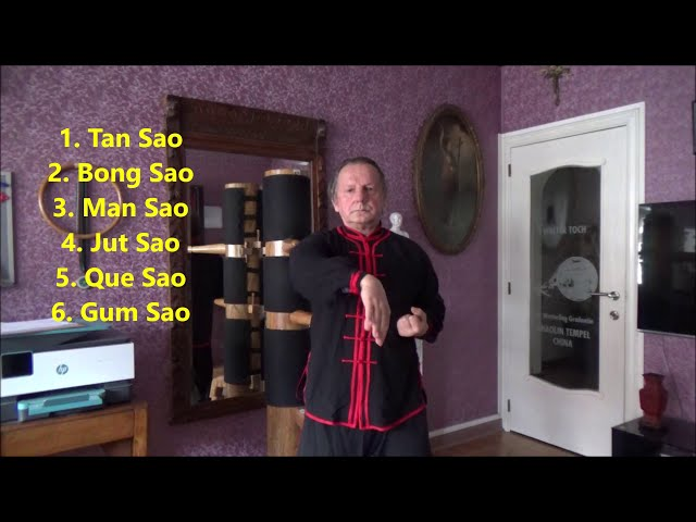 GM Walter Toch Wing Chun 18 Sao or hands from Yong Chun