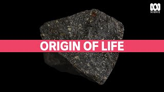 Did asteroids bring life to Earth? | Catalyst