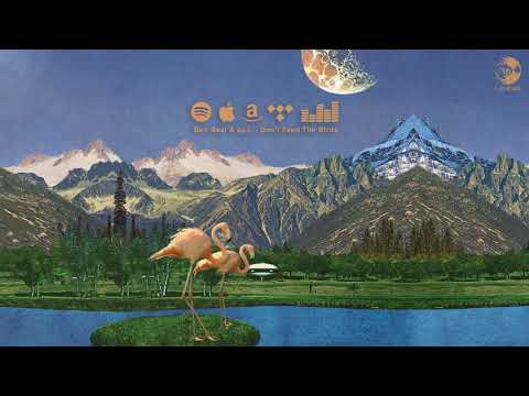 Ben Beal \u0026 byJ. - Terrapin' (Official Animated Audio)