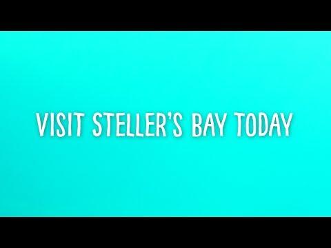 Visit Steller's Bay Today