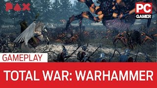 Total War: Warhammer gameplay - full battle