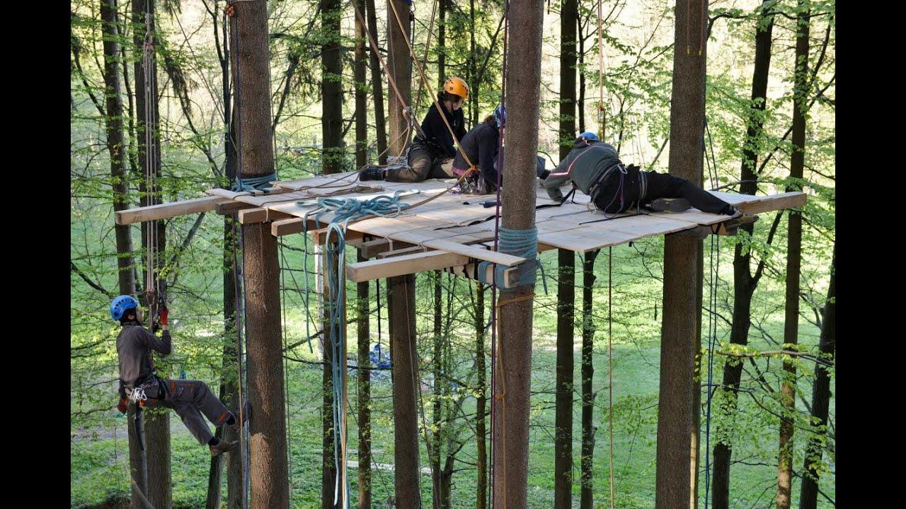 ubytování v korunách stromů