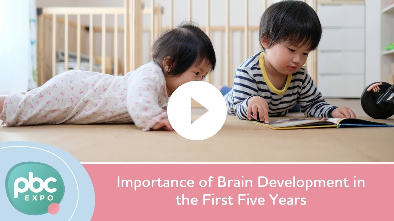 importance of brain development in the first five years