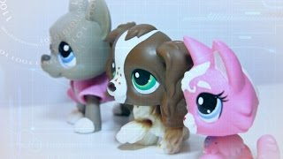 lps guard dogs episode 6 she wouldn t do this would she