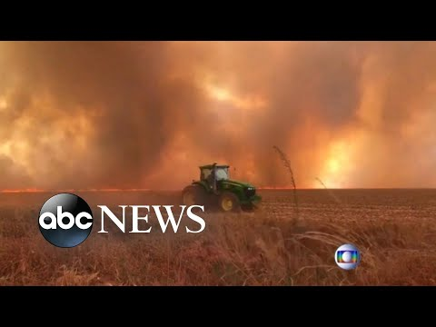 Record wildfires rage