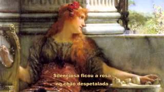 """"""" A Rosa Desfolhada """"  -  ( Vinicius De Moraes & Toquinho )"""
