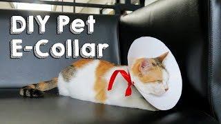 DIY Pet E-Collar