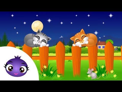 Aaa kotki dwa - kołysanki dla dzieci