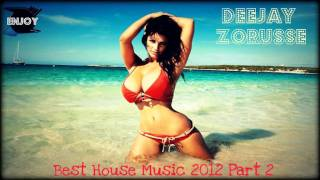 New Best House Music 2012 Part 2 By: DJ Zoru$$£ (Free Dowload + PlayList )