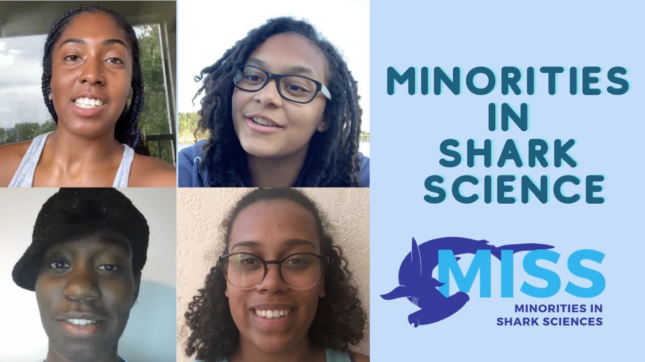Minorities In Shark Science