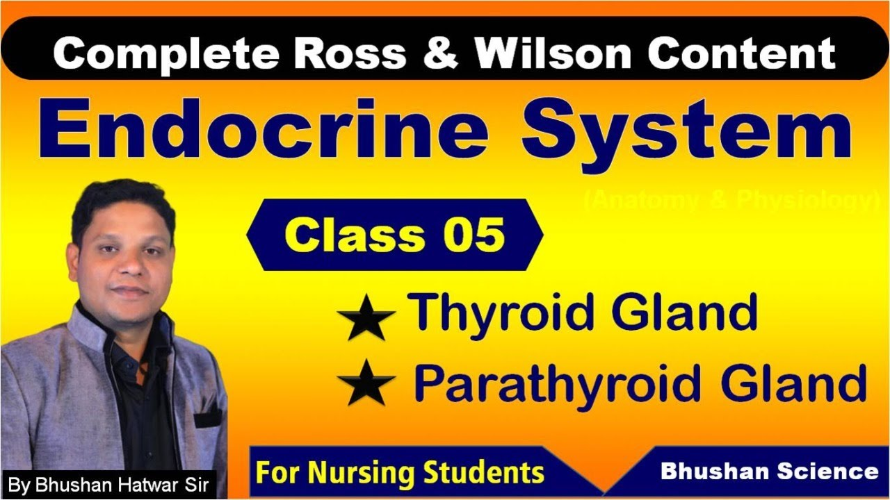 PART 5 : Endocrine System | Nursing Online Classes | ROSS & WILSON Anatomy & Physiology