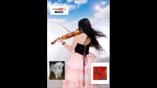 Buyl (Star) - 200 Pounds Beauty OST violin cover