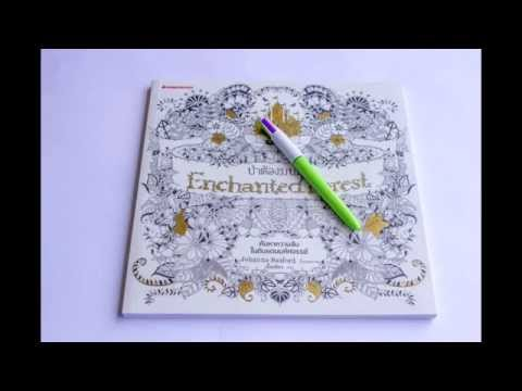 Enchanted Forest Adult Coloring Book Review