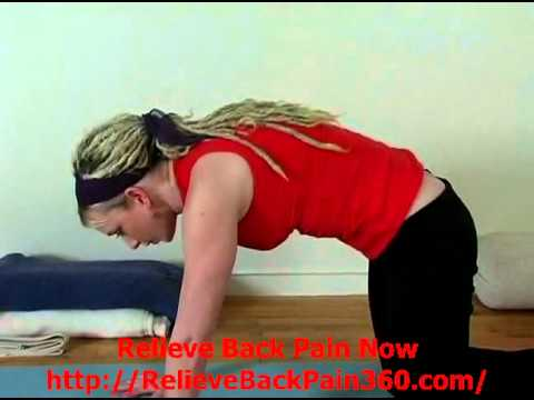 yoga for lower back pain  cat cow yoga pose for lower