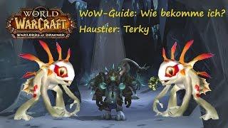 WoW-Guide: Wie bekomme ich das Haustier Terky?