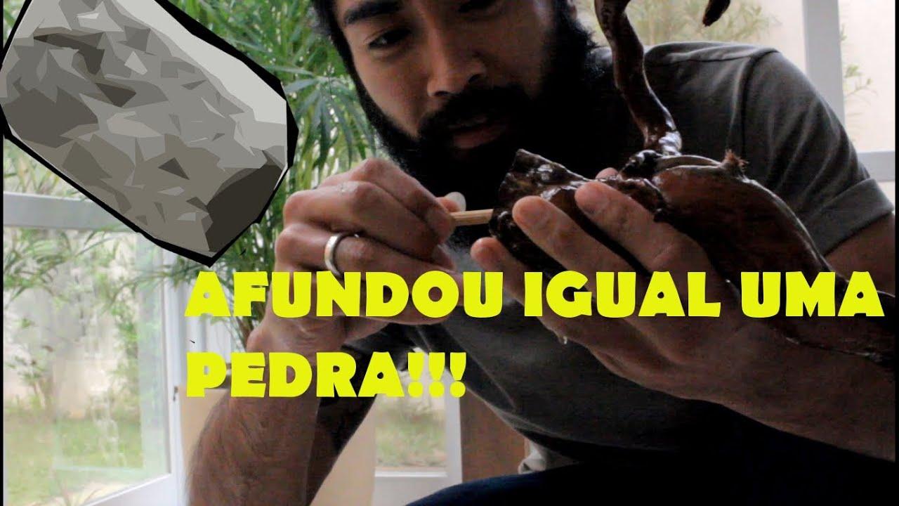 Como AFUNDAR RAIZ/TRONCO para AQUÁRIO!!!