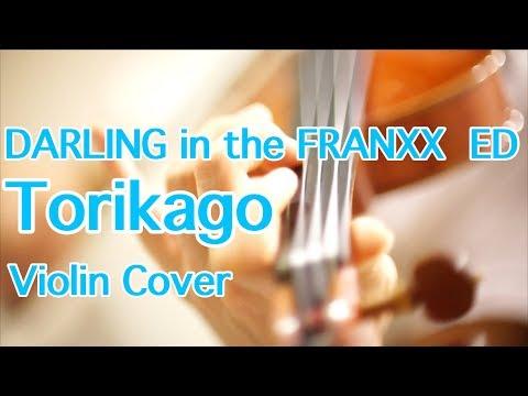 """DARLING in the FRANXX ED """"Torikago""""(Violin Cover)"""