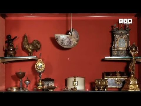 Wunderkammer - Arte, Natura, Meraviglia ieri e oggi