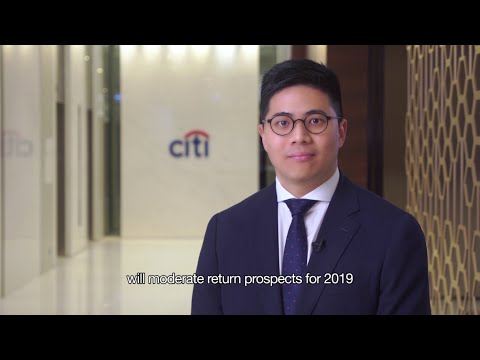Citibank's 2019 Market Outlook