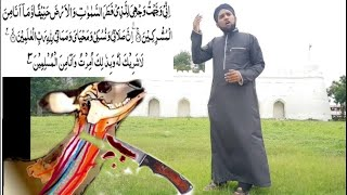 Qurbani ka tarika|qurbani ki dua