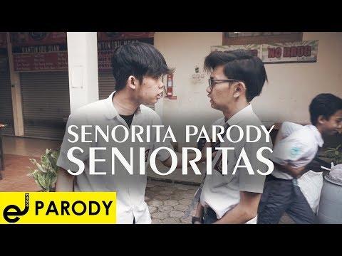 SENORITA PARODY (SENIORITAS)
