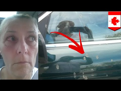 Human waste falls from plane and into woman's eyes - TomoNews