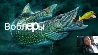 Первое моё видео на рыбалке на озере Копытко