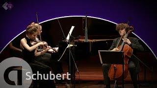 Schubert: Piano Trio No. 1 - Noa Wildschut, Alexander Warenberg & Elisabeth Brauss - HD