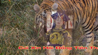 Gía Chầu lục Văn Thanh Long TRống Điện Tử mới Víp