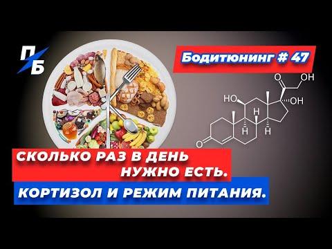 Сколько раз в день нужно есть. Кортизол и режим питания. Бодитюнинг #47