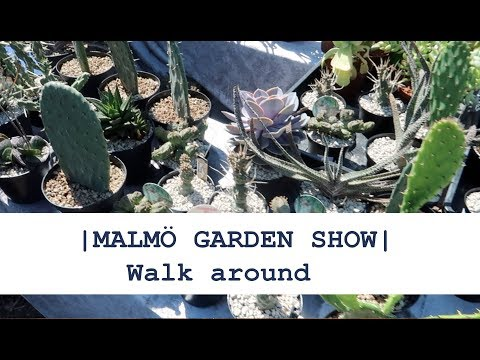 👇Collection of unseen nature👇-  |MALMÖ GARDEN SHOW|