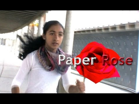Anti-Bullying Film - Paper Rose - By Olivia Mazzucato