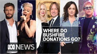 Who has donated to bushfire relief and where's the money going? | ABC News