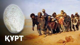 Как Казахи Алжирцев ҚҰРТом Спасали