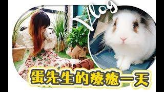 VLOG   陪蛋先生的一天!做盆栽, 野餐! 有蛋有兔,這就是復活節了吧...