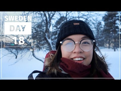 Life is pretty painful in -20°C weather... | SWEDEN #18