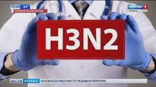 Специалисты прокомментировали ситуацию с гонконгским гриппом в Кузбассе