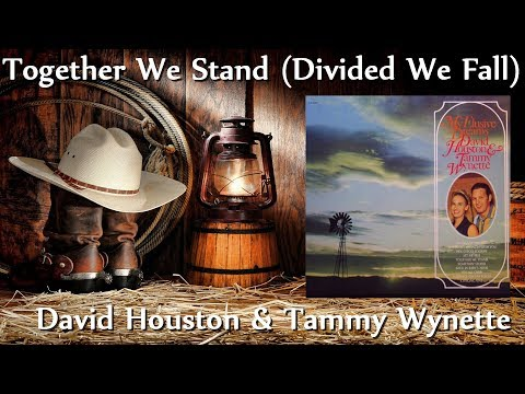 David Houston & Tammy Wynette ‎- Together We Stand (Divided We Fall)