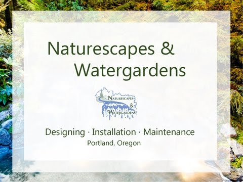 Naturescapes & Watergardens serving the Portland Metro Area