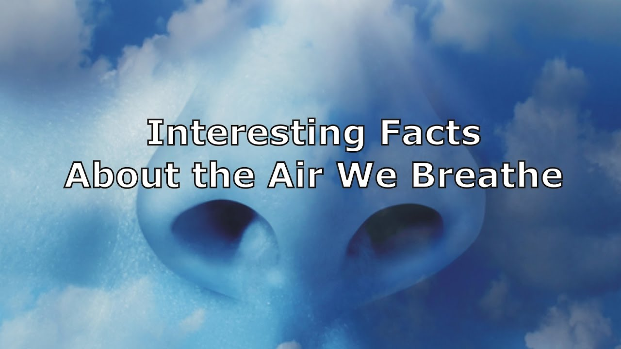 air we breathe What's in the air we breathe (infographic) [ssba] more than you eat, more than you drink, more than you do anything else in your life, you breathe.