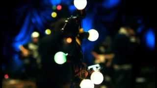 DVD Pregador Luo e Apocalipse XVI - Árvore de Bons Frutos (Completo)