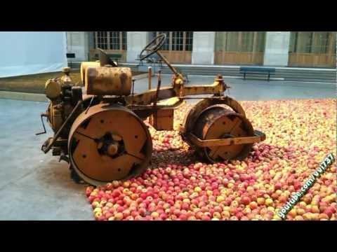 Популярные сорта яблок с фото. Рекомендации по