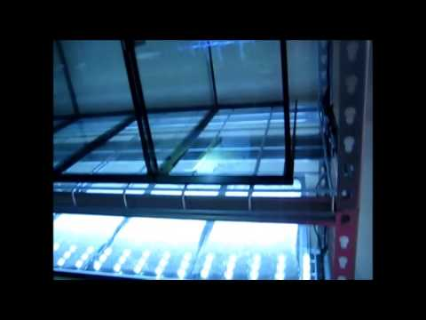 Edsal 6 Shelf Steel Shelving Unit Review Youtube